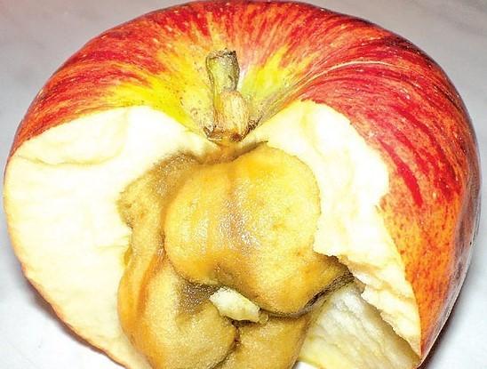 Пухлость яблока