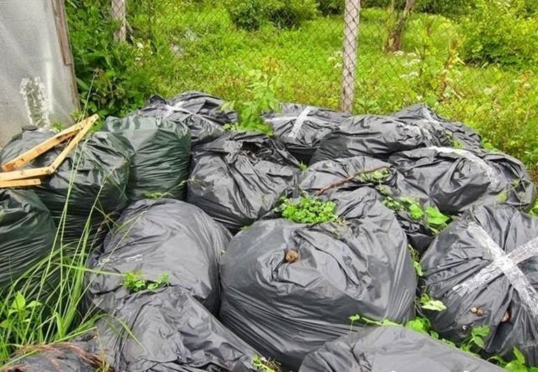 Сорняки упакованы в мешок